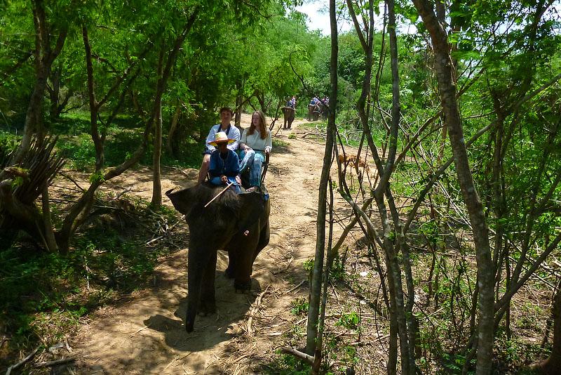 Прогулки на слонах Тайланд
