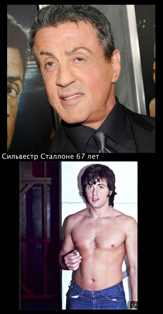 Сильвестр-Сталлоне