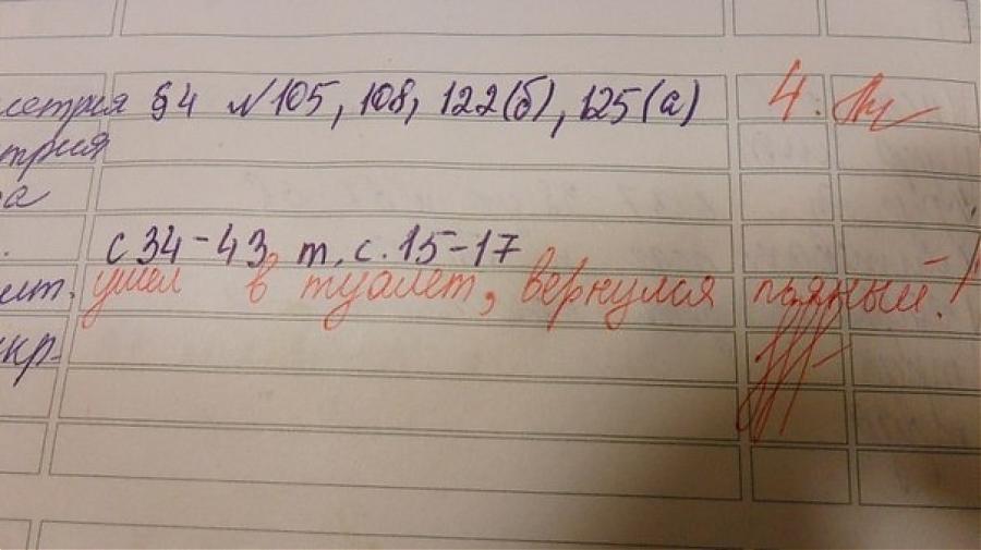 приколы в школьных дневниках 15