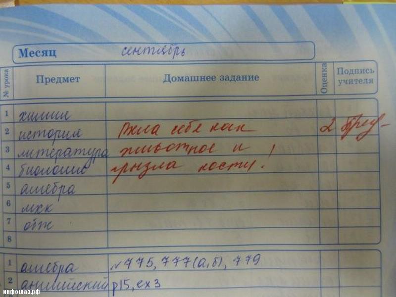 приколы в школьных дневниках 3