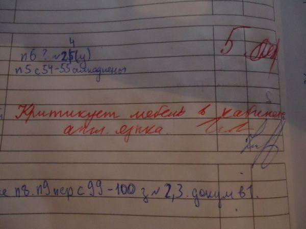 приколы в школьных дневниках