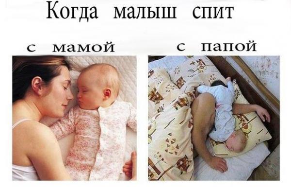 smeshnie_kartinki_137118553314062013283