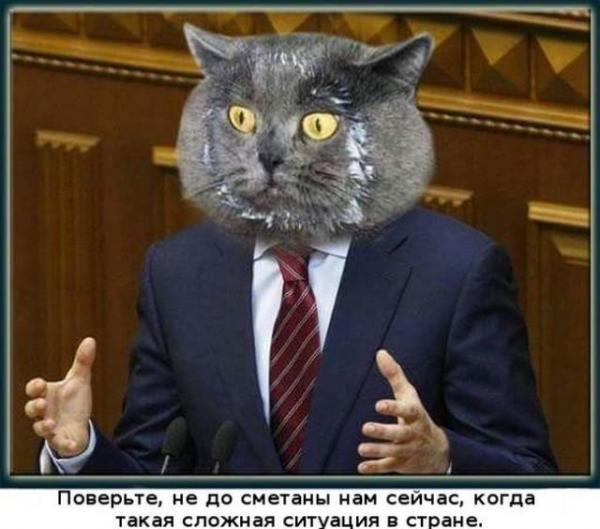 smeshnie_kartinki_145533487814