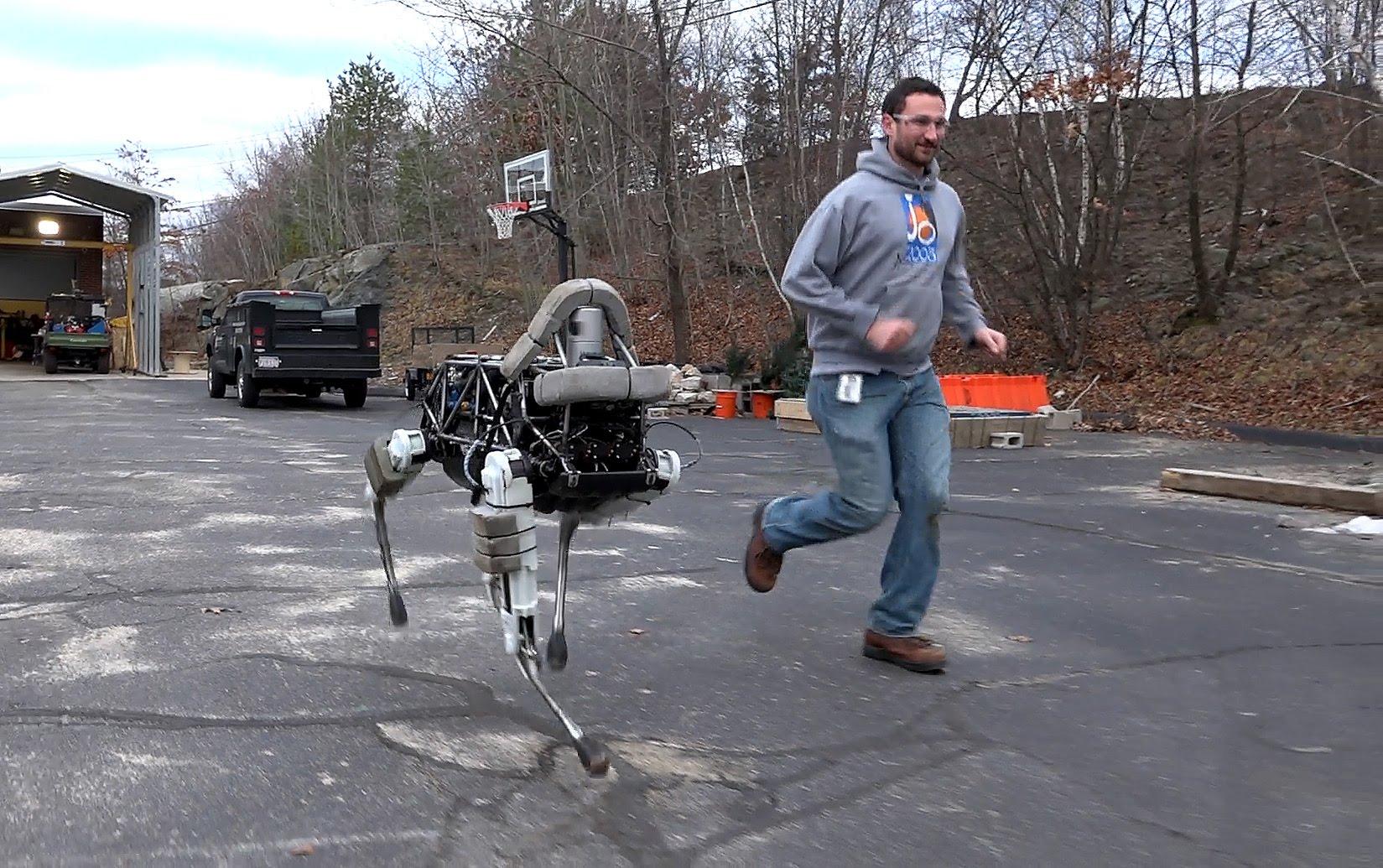Робот-собака покорил интернет