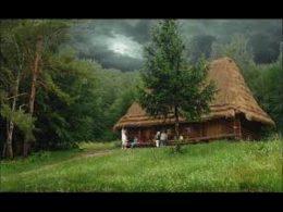Жизнь в дикой природе Аляски. Сам построил дом и жил 30 лет вдали от цивилизации. Хроникальные кадры.