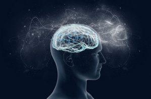 7 странных фактов о мозге, которые вам никто никогда не рассказывал…