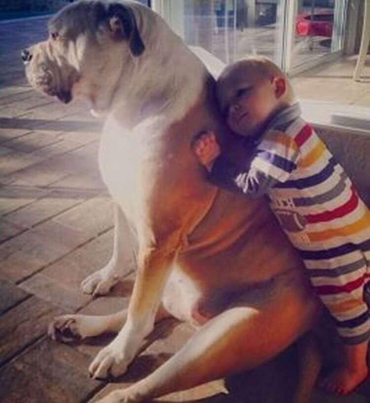 25 фотографий, доказывающих, почему каждый ребенок должен иметь домашнее животное