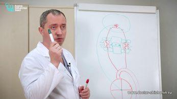 Почему шейный остеохондроз опасен для сердца и провоцирует гипертонию