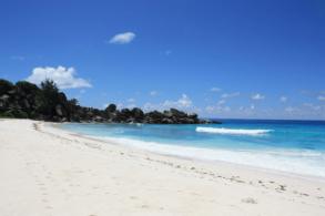 Бывший миллионер почти 30 лет живет на необитаемом острове как настоящий Робинзон (фото)