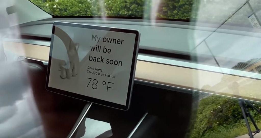 Сообщение на экране Tesla Model Y в режиме собаки